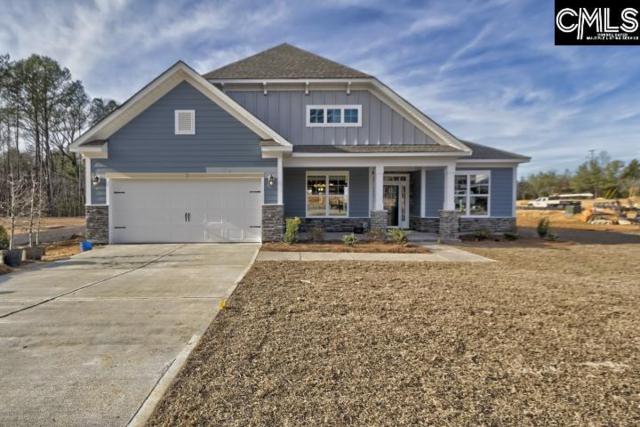 14 Cedar Croft Court #69, Irmo, SC 29063 (MLS #446881) :: EXIT Real Estate Consultants
