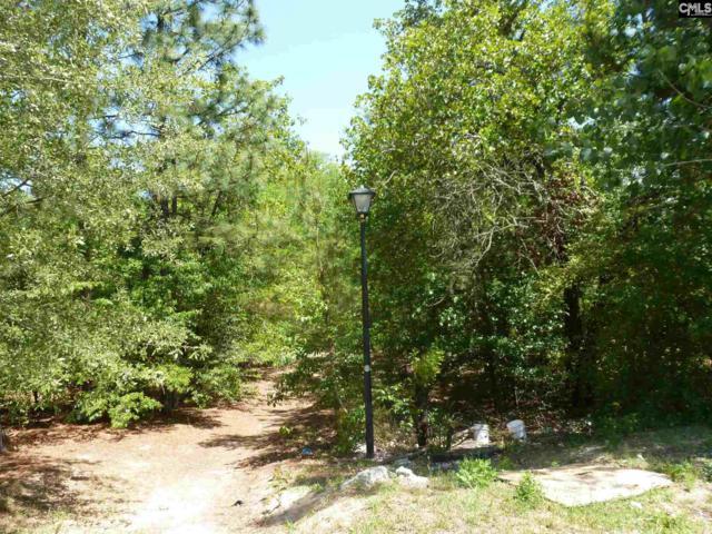 180 Tylers Trail, Lexington, SC 29073 (MLS #446908) :: EXIT Real Estate Consultants