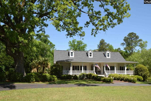 105 Kenwood Court, Irmo, SC 29063 (MLS #447015) :: The Olivia Cooley Group at Keller Williams Realty