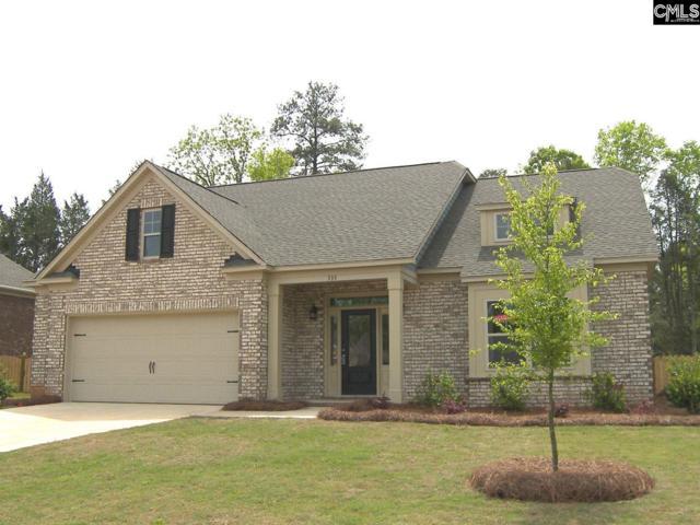 335 Berlandier Lane, Columbia, SC 29212 (MLS #447062) :: EXIT Real Estate Consultants