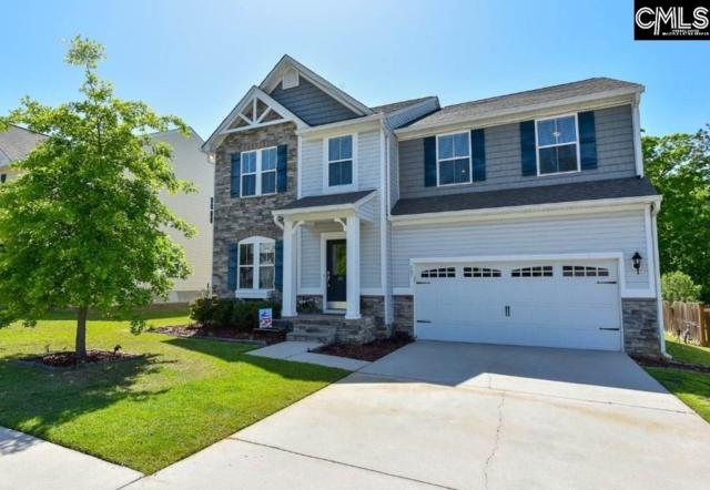 207 Hammock Drive, Lexington, SC 29072 (MLS #447231) :: Home Advantage Realty, LLC