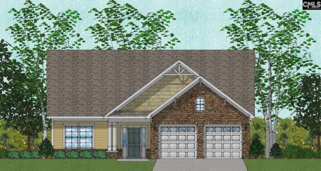 317 Renoir 201 Lane #201, Chapin, SC 29036 (MLS #447374) :: EXIT Real Estate Consultants