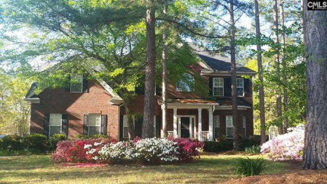 231 Talon Way, Blythewood, SC 29016 (MLS #447428) :: EXIT Real Estate Consultants