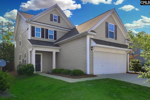 527 Slices Way, Chapin, SC 29036 (MLS #447434) :: Home Advantage Realty, LLC