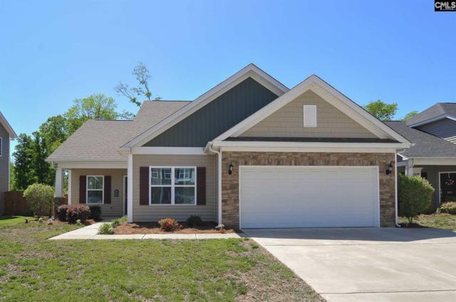 969 Stradley Lane, Chapin, SC 29036 (MLS #447649) :: EXIT Real Estate Consultants