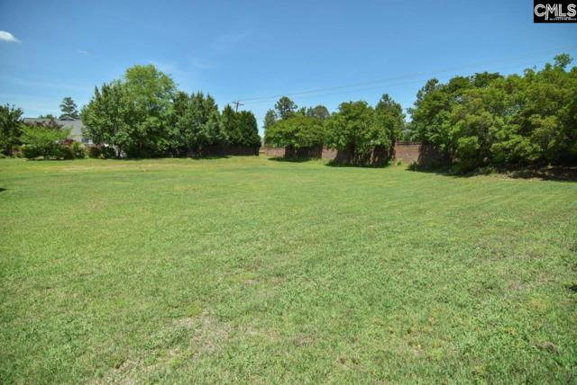 100 Hickory Hall Lane, Irmo, SC 29063 (MLS #447826) :: EXIT Real Estate Consultants
