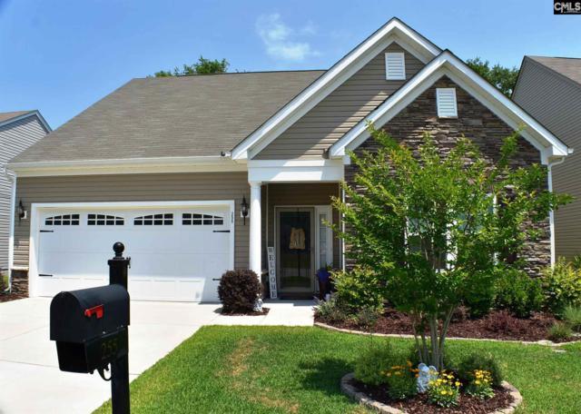 255 Luna Trail, Lexington, SC 29072 (MLS #448015) :: EXIT Real Estate Consultants