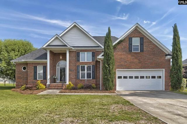 304 Whiteplains Place, Gilbert, SC 29054 (MLS #448186) :: EXIT Real Estate Consultants