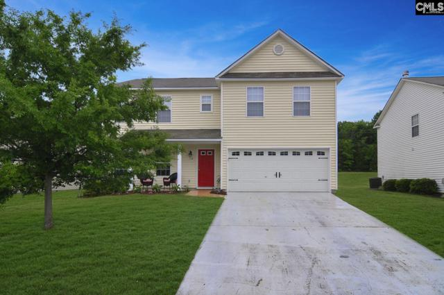 348 Eagle Pointe Drive, Chapin, SC 29036 (MLS #448190) :: The Olivia Cooley Group at Keller Williams Realty