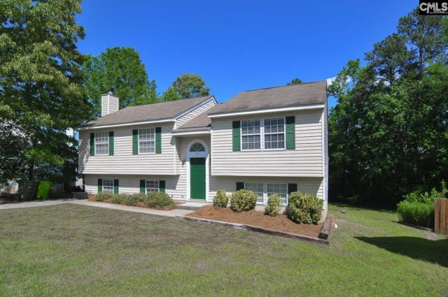 17 Gowham Court, Irmo, SC 29063 (MLS #448267) :: RE/MAX AT THE LAKE