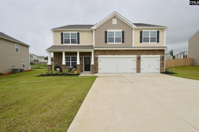 711 Cape Horn Lane, Chapin, SC 29063 (MLS #448304) :: RE/MAX AT THE LAKE