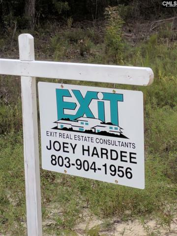 Big Branch Rd Lot 2, Wagener, SC 29164 (MLS #448441) :: EXIT Real Estate Consultants