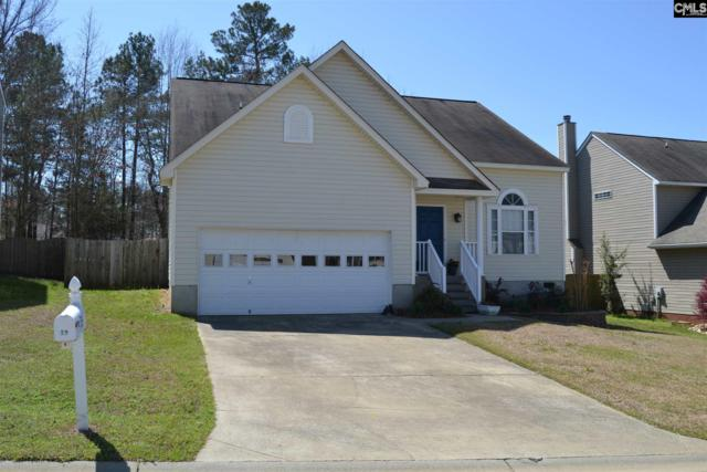 39 Stoney Pointe Drive, Chapin, SC 29036 (MLS #448702) :: The Olivia Cooley Group at Keller Williams Realty