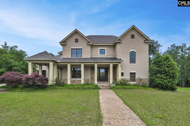 231 Wrenfield Lane, Blythewood, SC 29016 (MLS #448895) :: EXIT Real Estate Consultants