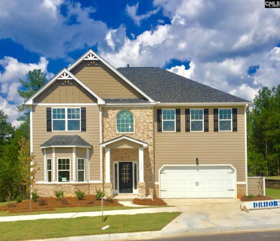 164 Crimson Queen Drive #405, Blythewood, SC 29016 (MLS #448945) :: The Olivia Cooley Group at Keller Williams Realty