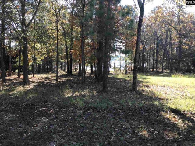 133 Summer Breeze Drive, Leesville, SC 29070 (MLS #449096) :: Home Advantage Realty, LLC