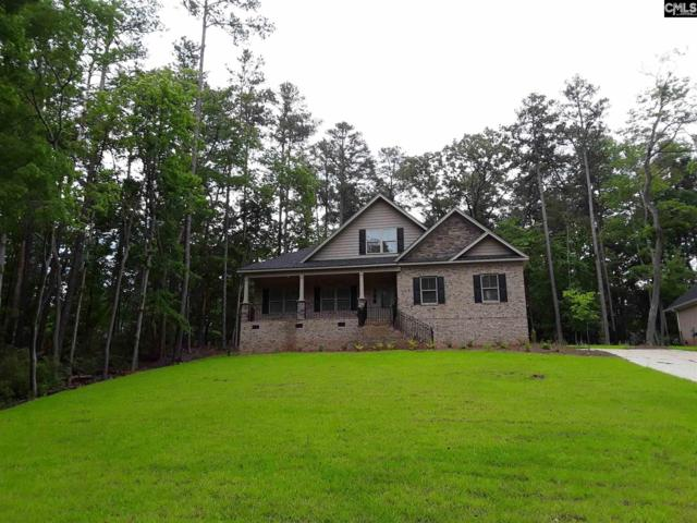 407 Lookover Pointe Drive, Chapin, SC 29036 (MLS #449172) :: Home Advantage Realty, LLC