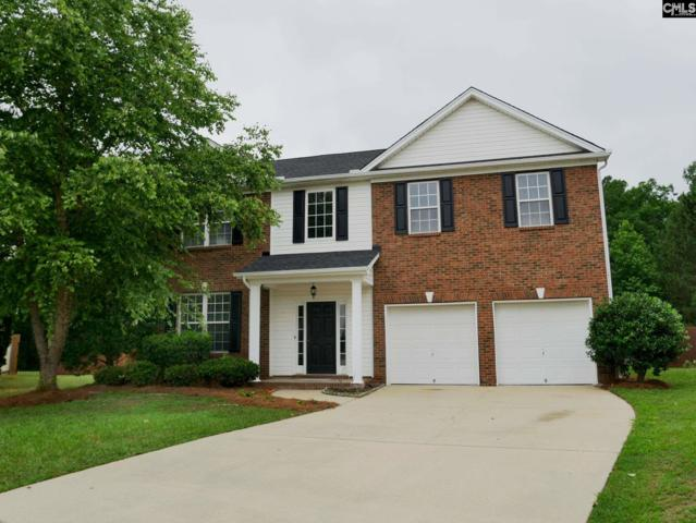 428 Buckthorne Drive, Lexington, SC 29072 (MLS #449244) :: RE/MAX AT THE LAKE