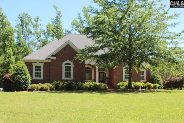 324 Rocky Meadow Drive, Gilbert, SC 29054 (MLS #449474) :: RE/MAX AT THE LAKE