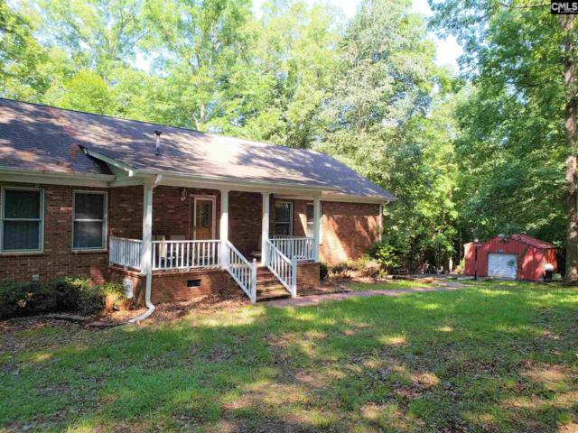 1376 Beagle Run Road, Chapin, SC 29036 (MLS #449571) :: Home Advantage Realty, LLC