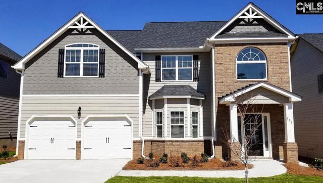 105 Morning  Dew Drive #41, Lexington, SC 29072 (MLS #449721) :: Home Advantage Realty, LLC