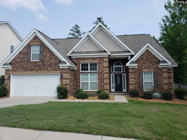 211 Bronze Drive, Lexington, SC 29072 (MLS #449864) :: The Olivia Cooley Group at Keller Williams Realty