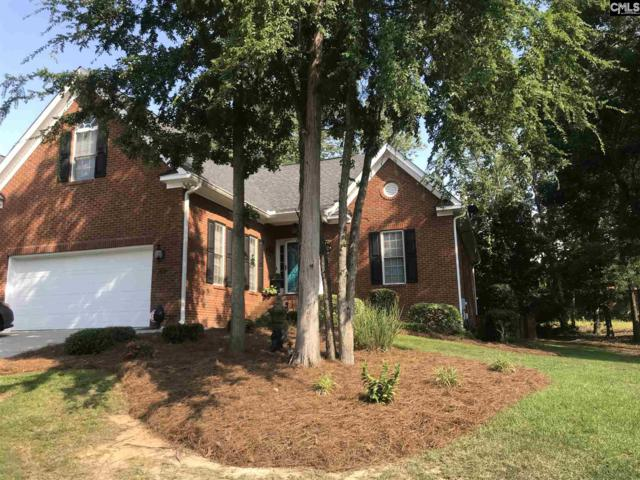 108 Lake Hilton Drive, Chapin, SC 29036 (MLS #449920) :: EXIT Real Estate Consultants