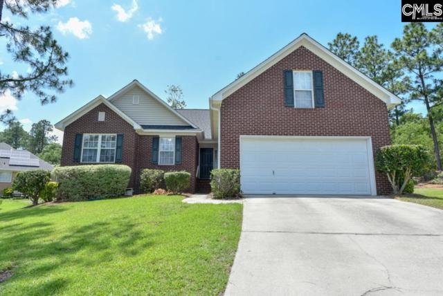 3 Wood Turtle Court, Columbia, SC 29229 (MLS #450024) :: RE/MAX AT THE LAKE
