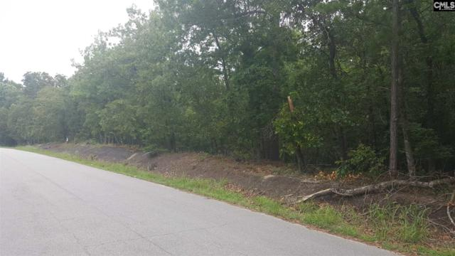 313 Overlook Drive, Blythewood, SC 29016 (MLS #450035) :: EXIT Real Estate Consultants