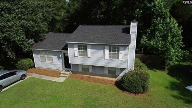 301 Woodspur Road, Irmo, SC 29063 (MLS #450126) :: The Neighborhood Company at Keller Williams Columbia