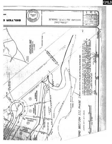 463 Saddlebrooke Rd, Lexington, SC 29072 (MLS #450182) :: RE/MAX AT THE LAKE