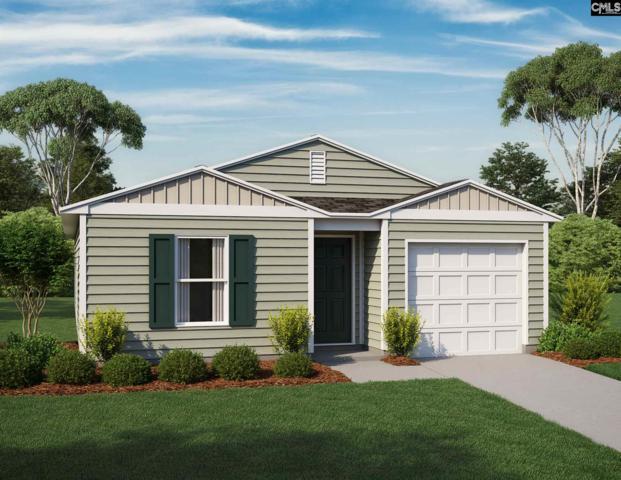 209 Briercliff Drive, Columbia, SC 29203 (MLS #450193) :: Home Advantage Realty, LLC