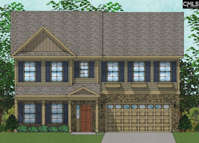 244 Liberty Ridge Drive Lot #172, Elgin, SC 29045 (MLS #450404) :: The Olivia Cooley Group at Keller Williams Realty