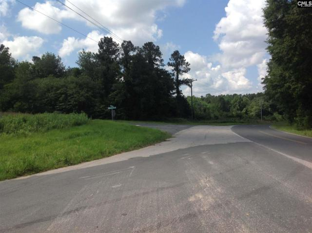 Ernest Johnson Rd And Holiness Church Rd Road, Wagener, SC 29164 (MLS #450413) :: Home Advantage Realty, LLC