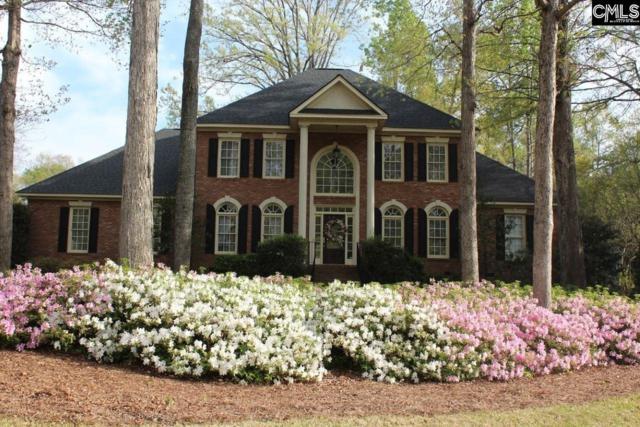 144 Secret Cove Drive, Lexington, SC 29072 (MLS #450431) :: Home Advantage Realty, LLC