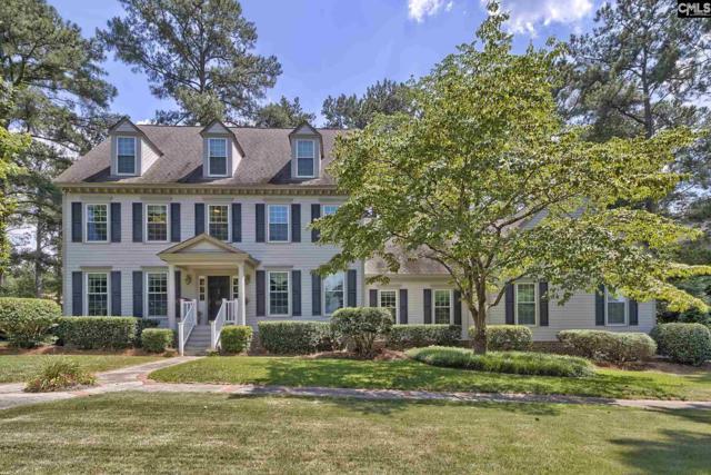 111 Holliday Road, Columbia, SC 29223 (MLS #450485) :: Home Advantage Realty, LLC
