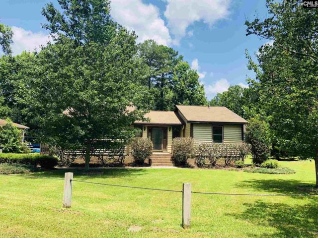 100 Cotswold Court, Irmo, SC 29063 (MLS #450494) :: Home Advantage Realty, LLC