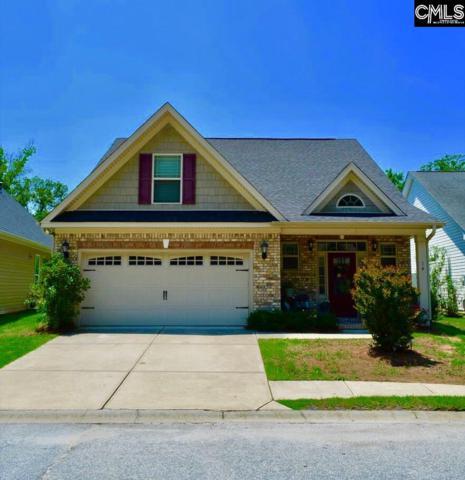 14 Revelstone Way, Chapin, SC 29036 (MLS #450524) :: Home Advantage Realty, LLC