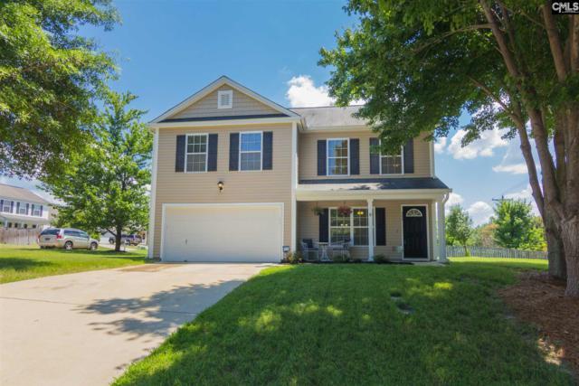 357 Richmond Farms Circle, Lexington, SC 29072 (MLS #450569) :: The Olivia Cooley Group at Keller Williams Realty