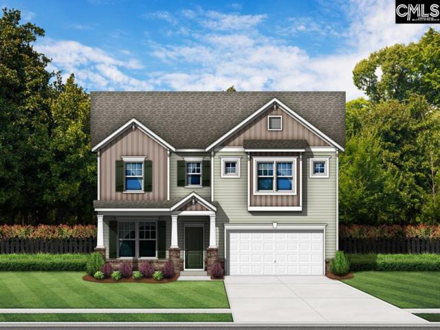 511 Amberwaves Court, Lexington, SC 29073 (MLS #450577) :: EXIT Real Estate Consultants