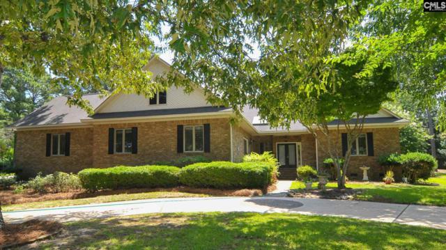 220 Fallen Oak Drive, Columbia, SC 29229 (MLS #450581) :: Home Advantage Realty, LLC