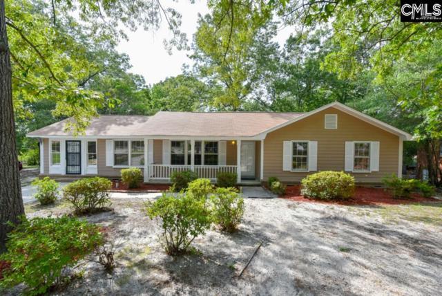 217 Reseda Drive, Columbia, SC 29223 (MLS #450635) :: Home Advantage Realty, LLC