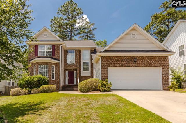 228 Oldtown Drive, Lexington, SC 29072 (MLS #450664) :: EXIT Real Estate Consultants