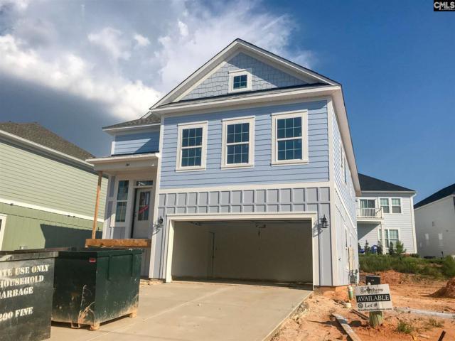 344 Cabana Way, Lexington, SC 29072 (MLS #450724) :: The Olivia Cooley Group at Keller Williams Realty