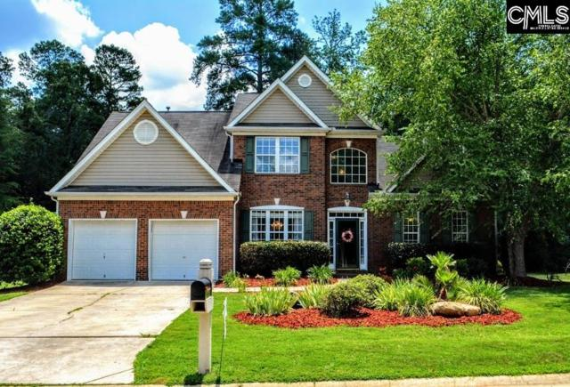 6 Swainson Court, Irmo, SC 29063 (MLS #450752) :: EXIT Real Estate Consultants