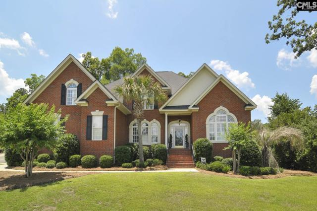 4 Dutchfork Branch Court, Irmo, SC 29063 (MLS #450767) :: EXIT Real Estate Consultants