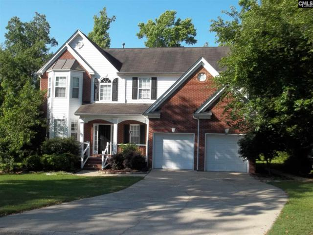 708 Casco Court, Lexington, SC 29072 (MLS #450780) :: The Olivia Cooley Group at Keller Williams Realty