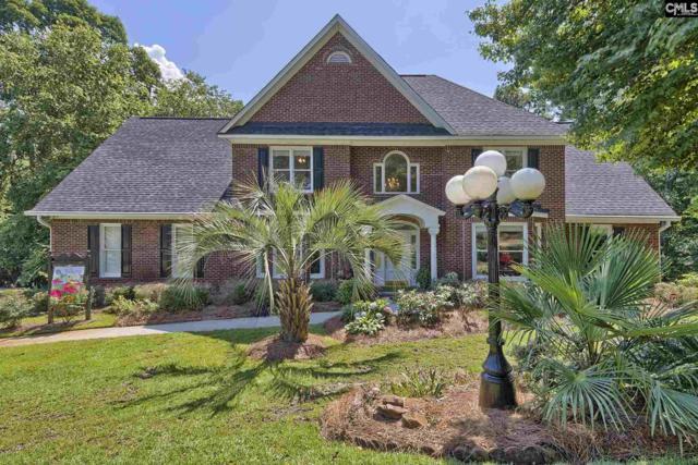 207 Misty Oaks Court, Lexington, SC 29072 (MLS #450852) :: EXIT Real Estate Consultants