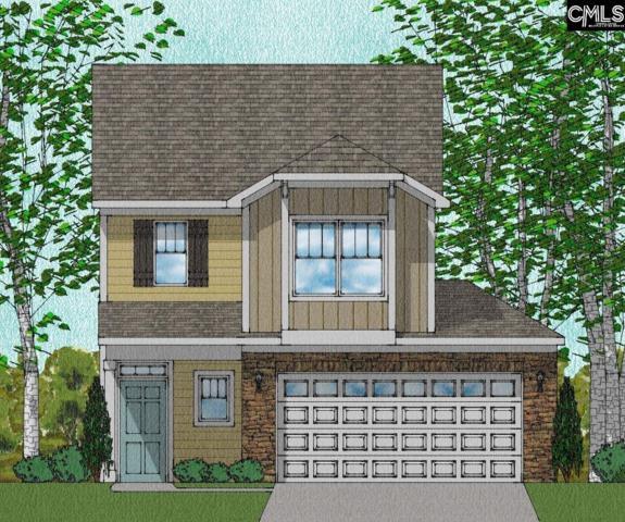906 Tuxford Trail Lot #156, Elgin, SC 29045 (MLS #450929) :: EXIT Real Estate Consultants