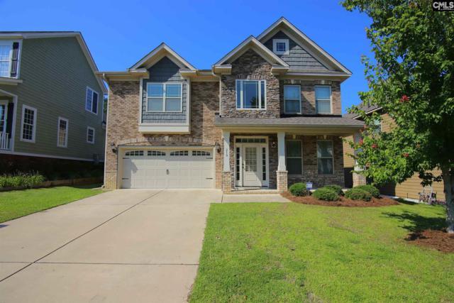 210 Bramble Place, Lexington, SC 29072 (MLS #451007) :: EXIT Real Estate Consultants